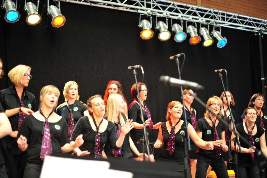 2015-07-26 SingIng 175-Jahr-Feier Mundelsheim 061