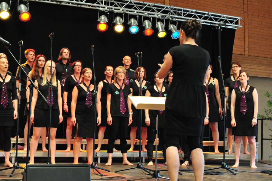 2015-07-26 SingIng 175-Jahr-Feier Mundelsheim 091