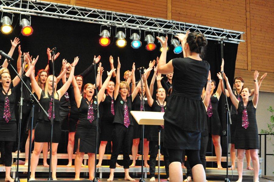 2015-07-26 SingIng 175-Jahr-Feier Mundelsheim 093