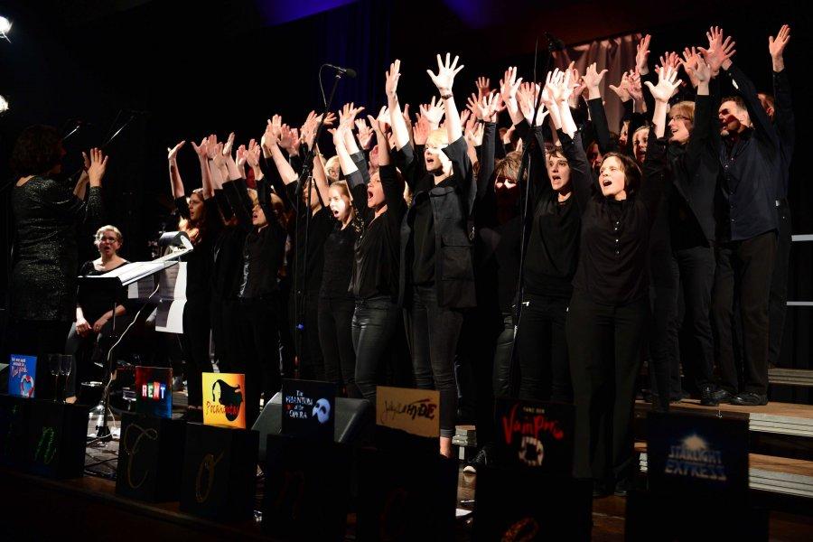 2017-02-12 Musicals in Concert Ingersheim 017