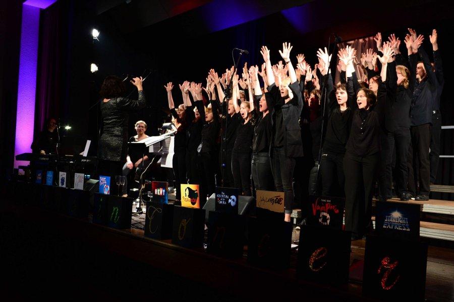 2017-02-12 Musicals in Concert Ingersheim 023