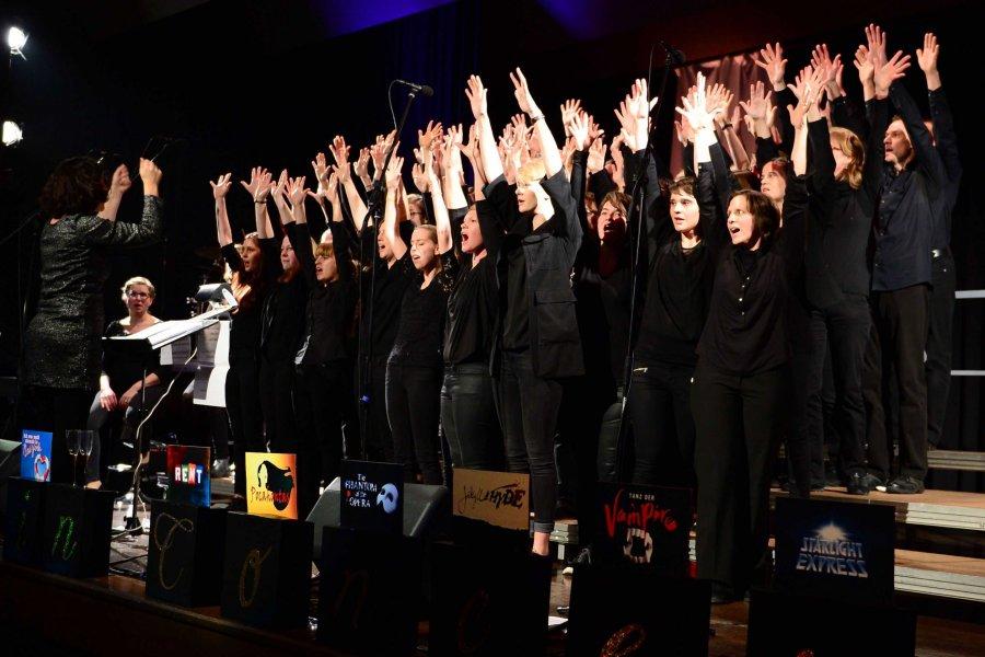 2017-02-12 Musicals in Concert Ingersheim 025